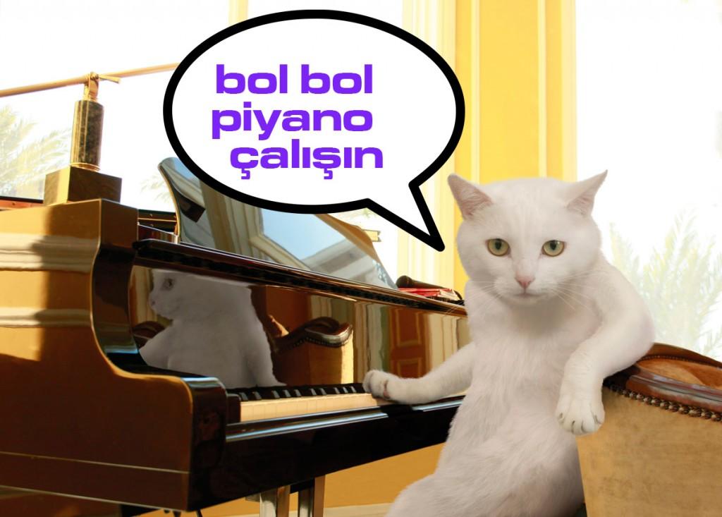 piyano-kursu-izmir-karşıyaka